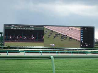 Gigantic LED screen at Nakayama Racecourse in Japan